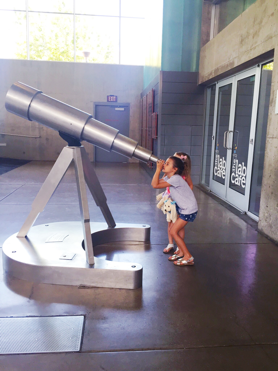 dog days of summer: Science museum