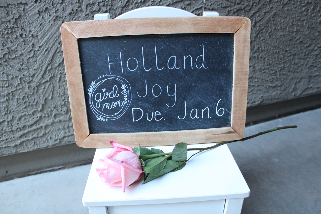 Holland Joy